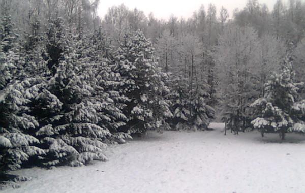 Zima w Zagruszanach – widok z okna